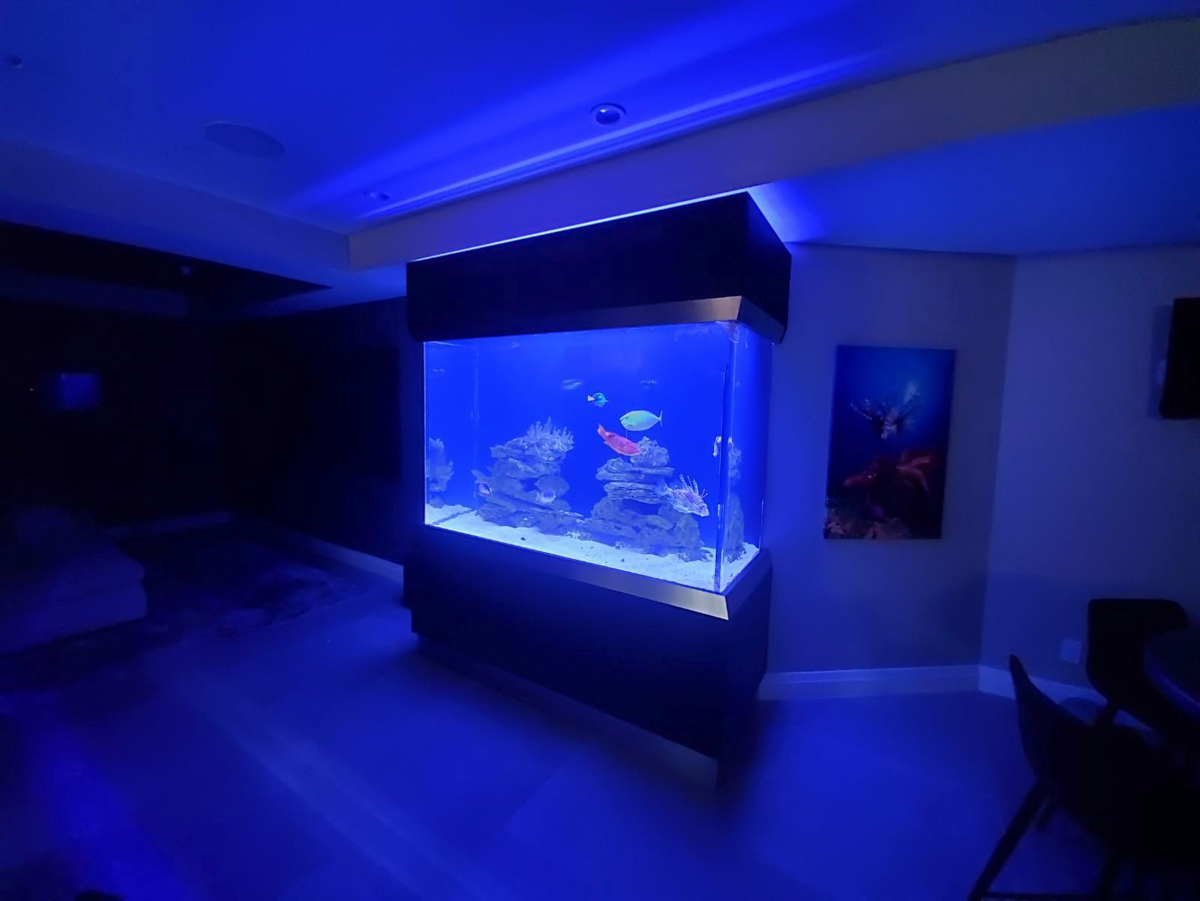 With the room lights off, you might think you were under the ocean