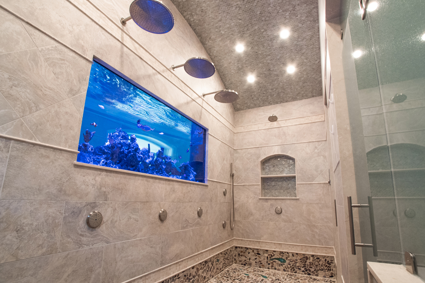 One side of this NJ beach house aquarium faces into a bathroom shower stall
