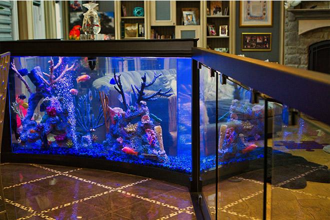 Close up of bannister aquarium