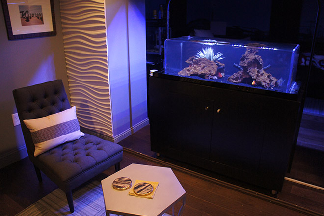 A different view of the aquarium