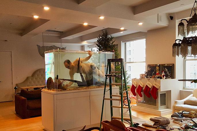Setting up an aquarium in Manhattan