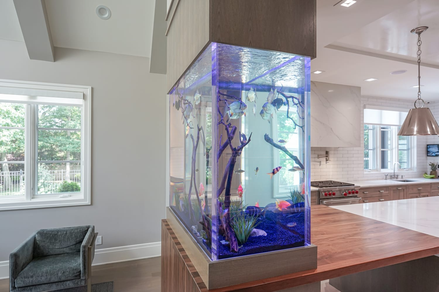 Kitchen island fish tank viewed from side