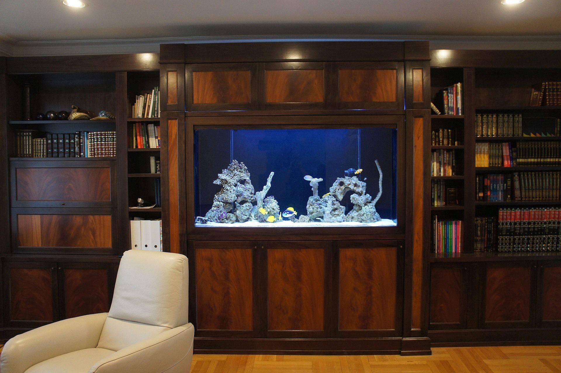 Custom Wall Unit Aquariums