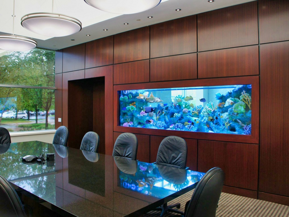 Our aquarium décor is installed with a nuanced eye towards artful presentation